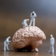 Miniature people, Scientist observing and discussing about human brain